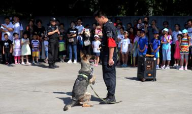 Police develop command device for canine unit
