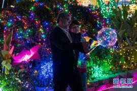 洛杉矶民众观看圣诞灯展
