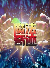 魔法奇迹 2010