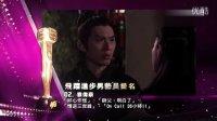 2013万千星辉颁奖典礼 飞跃进步男艺员提名名单