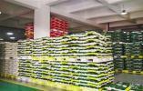 杭州现有粮食储备 够大家吃上7个多月