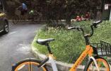 共享单车市场有了新变化:美团单车上路 七大电单车聚齐