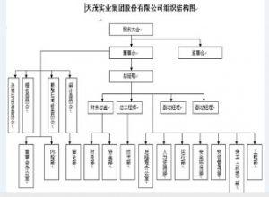 天茂实业集团股份有限公司