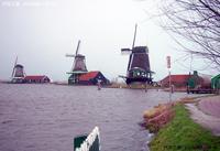 鹿特丹风车群