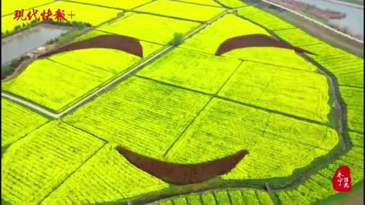 """赏油菜花、听音乐会、玩水上高尔夫……这个""""中国最美村镇""""火了"""