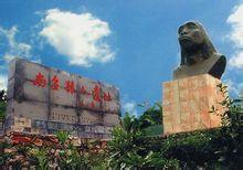 南召猿人遗址