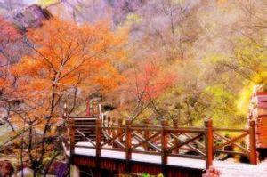 龙潭峡大峡谷迷人美景
