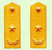 武警少将常服肩章(1988~2007)