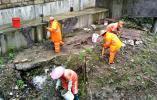 杭州三墩白洋河乱象被曝光后 主管部门是这样做的