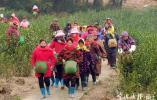 秋风过处五谷香 致敬默默耕耘的农民朋友