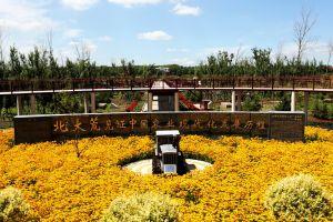 北大荒农机博览园