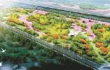 尋回消逝鄉愁 錢江世紀城開建原始郊野公園